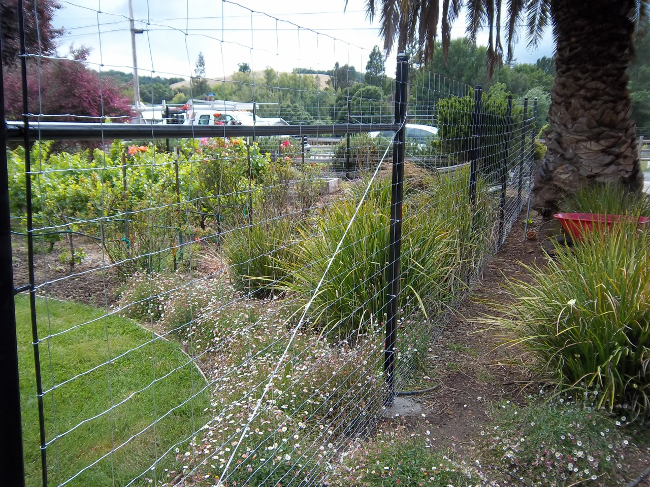 Field Wire Fences « Product Categories « Arbor Fence Inc | a Diamond ...