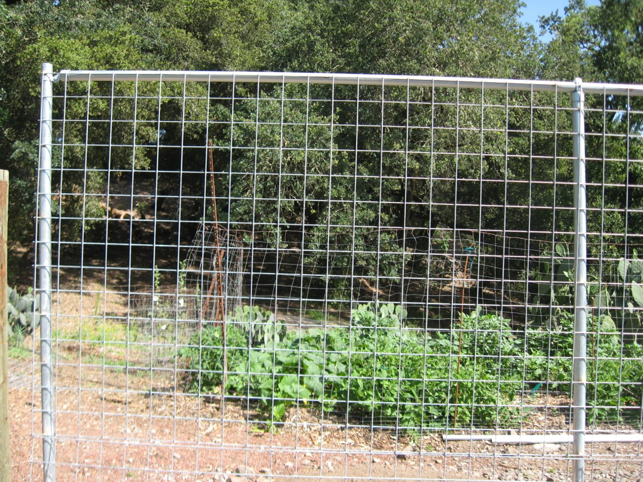 4 4 2 4 Hi Five Wire Panels Arbor Fence Inc A