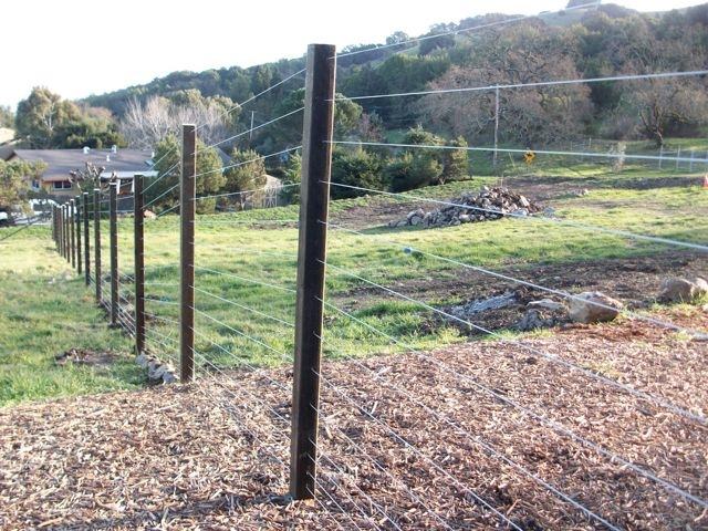 Cable Rail 171 Arbor Fence Inc A Diamond Certified Company