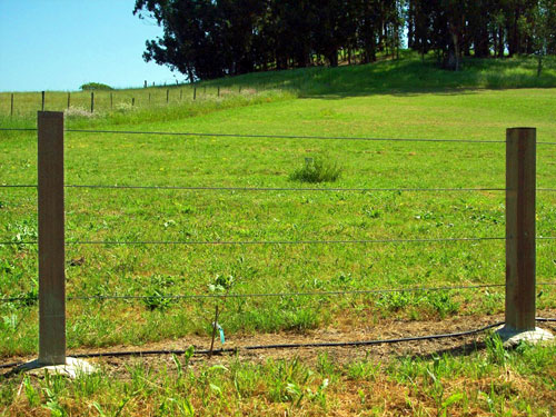 CABLE RAIL « Arbor Fence Inc | a Diamond Certified Company